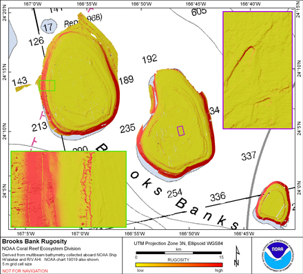 Image map of Brooks rugosity.