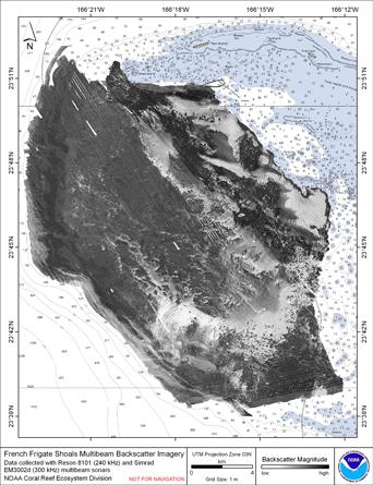 FFS composite backscatter imagemap.