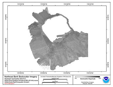 Northeast Bank Hiialakai Simrad EM300 30 kHz Backscatter Imagery.