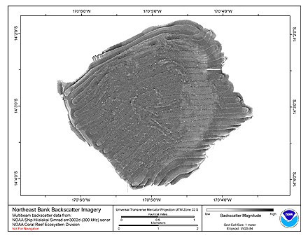Northeast Bank Hiialakai Simrad EM3002d 300 kHz Backscatter Imagery.