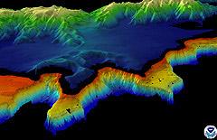 Perspective image of Tutuila's SE shore.