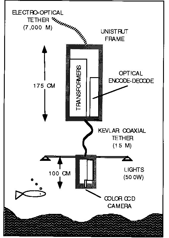 the fiber optic communication undersea system  focus