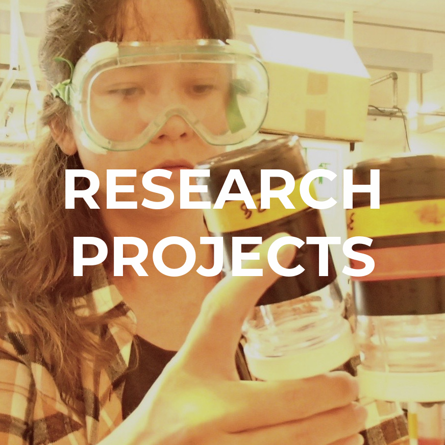 """Image of GES student in the lab with goggles on, with text over image saying, """"Research Projects"""""""
