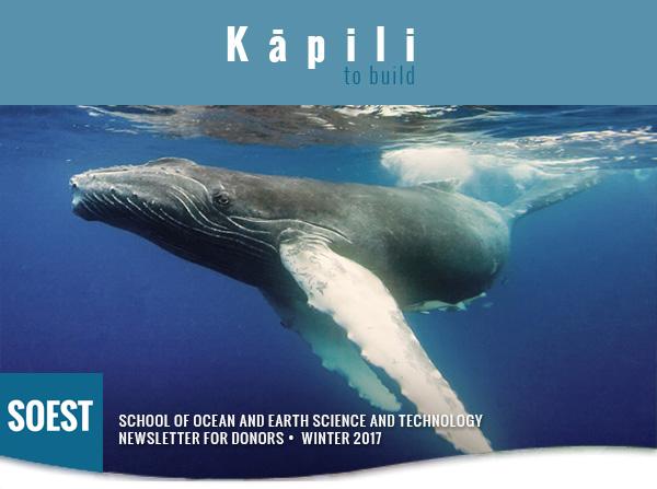 Kapili Winter 2017 banner