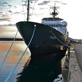Photo of R/V Falkor.
