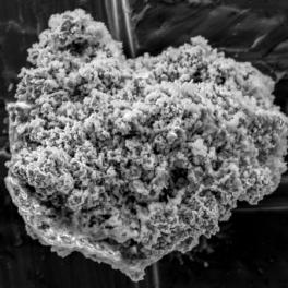 Image of comet dust
