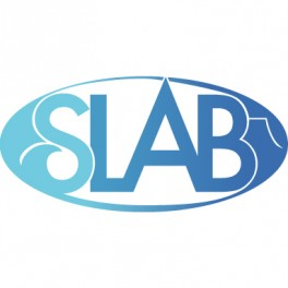 SLAB logo image