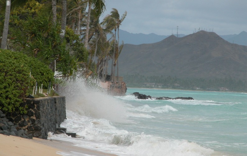 In Hawaiʻi, increased sea level rise may cause a doubling of beach erosion by 2050. Photo courtesy of C.Fletcher.