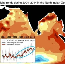 Changes in ocean height in the Indian Ocean (2004-2014). Darker reds indicate faster rate of rise.