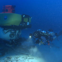 Diver, lead author R Pyle and HURL's submersible explore deep reefs. Credit: Robert K. Whitton