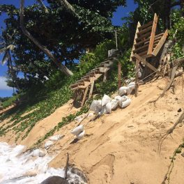 Image of beach erosion at Sunset Beach, O'ahu