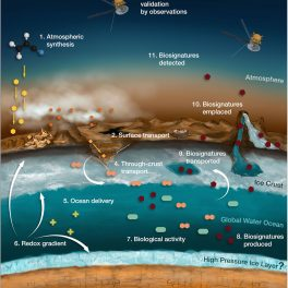 Location of potential biosignatures on Titan. Credit: Athanasios Karagiotas and Theoni Shalamberidze