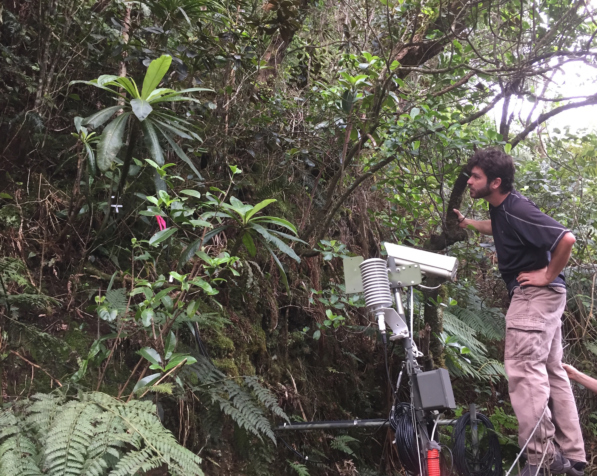 Lucas Fortini with Plant Cam. Credit: USGS.