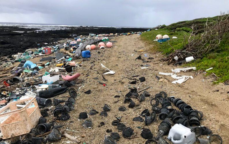 Plastic pollution at Kamilo Point, Big Island on February 14, 2018. Photo credit: Sarah-Jeanne Royer.