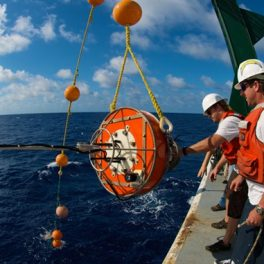 Oceanographers retrieve a sediment trap, above, pulled from the sea at Station ALOHA. The trap captures sinking particles in the ocean. Image courtesy of Paul Lethaby.