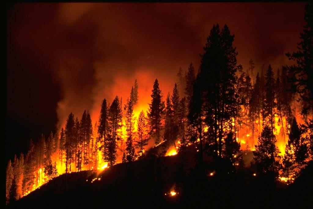 Wildfire. Credit: NOAA