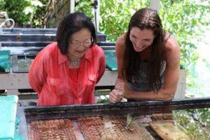 Sen. Hirono and Gates Lab's Kira Hughes view coral research samples.