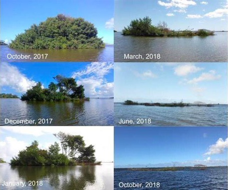 Time-lapse photos of invasive mangrove island at Heʻeia Fishpond