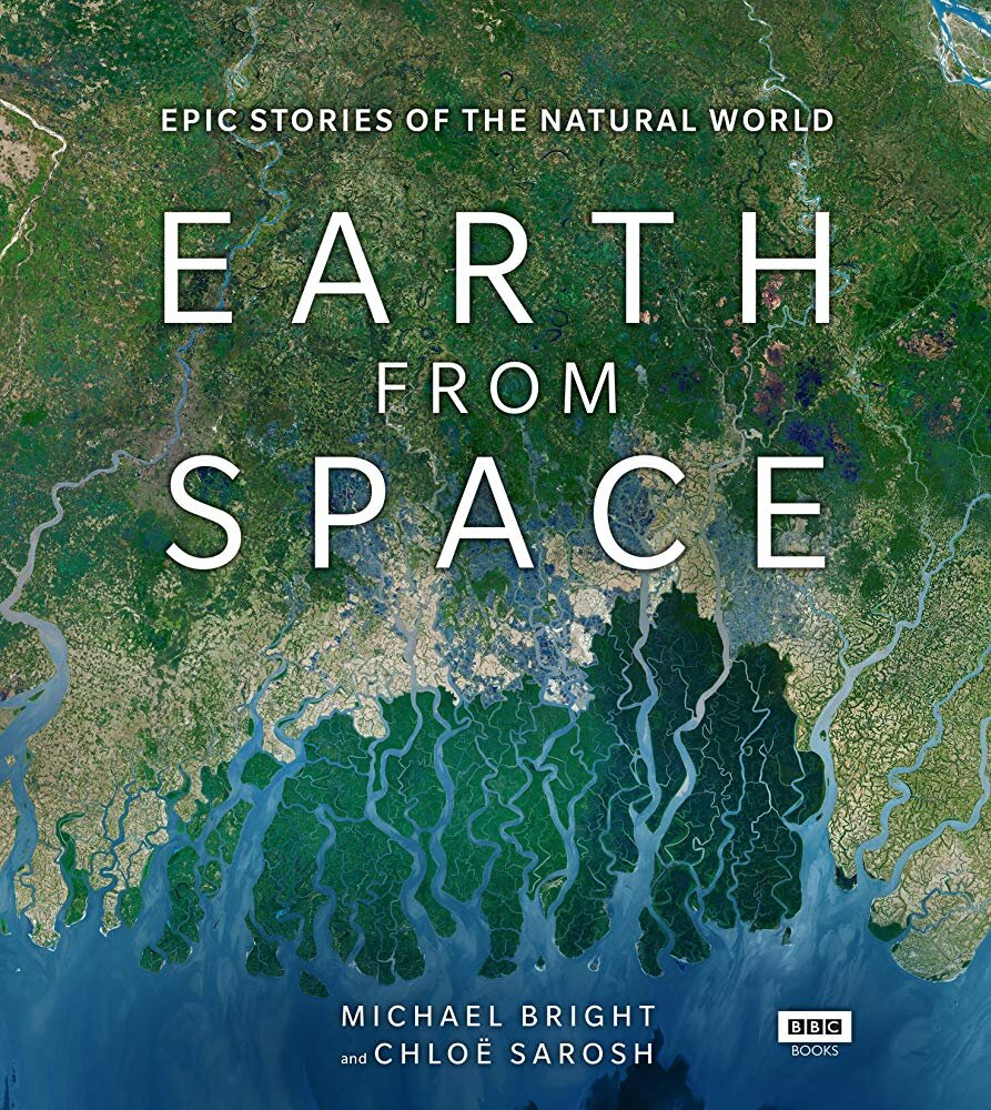 Life from Above (PBS), Earth from Space (BBC) series featured HIMB's Elizabeth Madin's research on reef halos.
