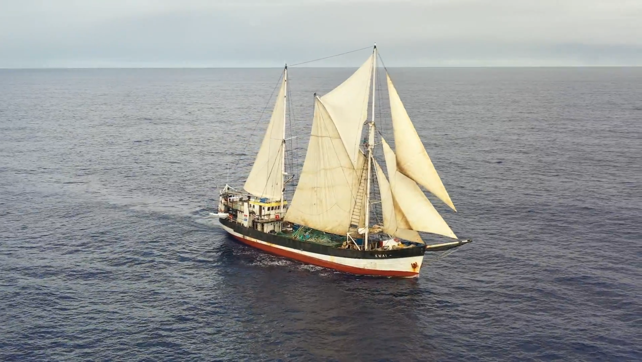 SV Kwai during 2019 cleanup expedition. Photo courtesy of the Ocean Voyages Institute.
