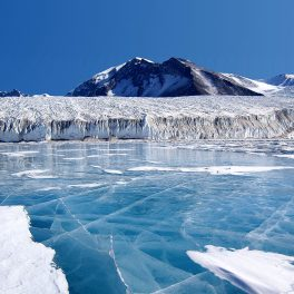 The blue ice covering Lake Fryxell in the Transantarctic Mountains comes from melted glacier water.