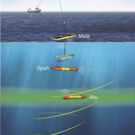 Two LRAUVs (Aku and Opah), below the ocean surface, and one Wave Glider (Mola), on the surface, formed a coordinated system to study the DCM. Opah and Mola followed the primary sampling robot, Aku, by acoustic tracking.