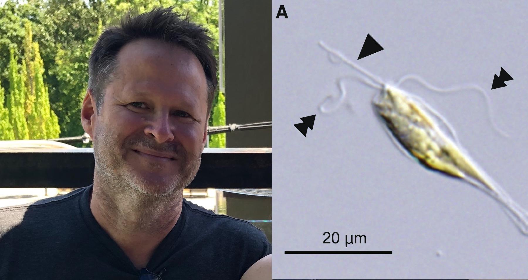 Michael Rappé (L); An alga from the novel phytoplankton class, Rappephyceae (R).