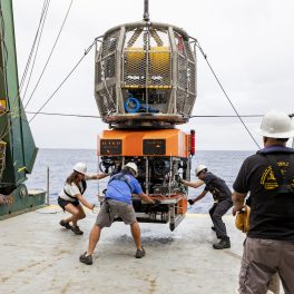 ROV Lu'ukai being recovered on the back deck of research vessel Kilo Moana