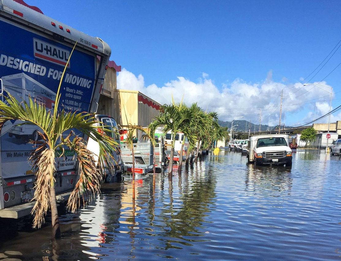 Flooded street with trucks in urban Honolulu, Hawai'i.